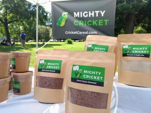 The Humane Farming of Our Mighty Crickets