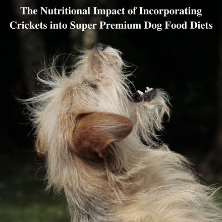 cricket protein super premium dog food study research paper
