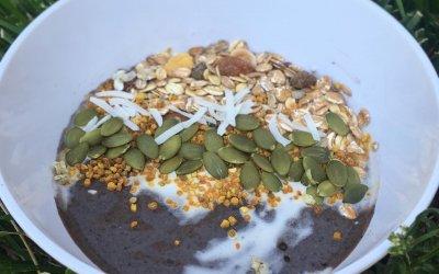 Cricket Protein Powder Smoothie Recipe