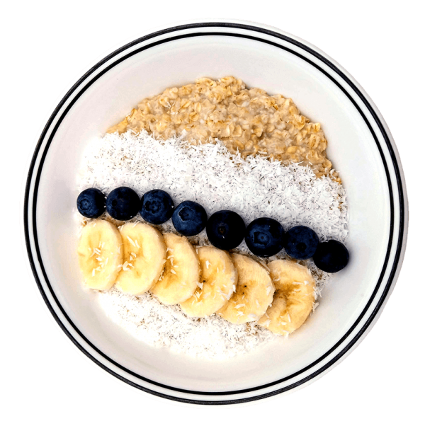 Mighty Cricket coconut cream protein oatmeal