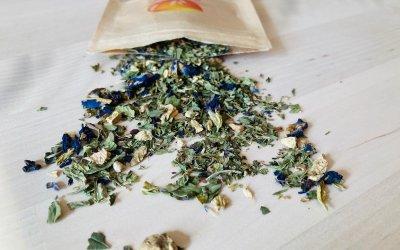 Blueberry Mint Cricket Protein Tea